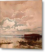 The Flood In The Darling 1890 Metal Print