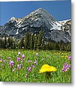 The Flower Field Metal Print