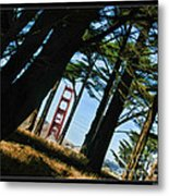 The Forest Of The Golden Gate Metal Print