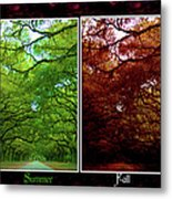 The Four Seasons- Featured In Comfortable Art And Newbies Groups Metal Print