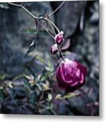 The Friday The 13th Rose Metal Print