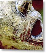 The Frozen Scream Metal Print