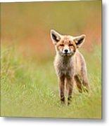 The Funny Fox Kit Metal Print