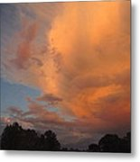The Fury And The Beauty Metal Print