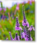 The Garden Palette Metal Print