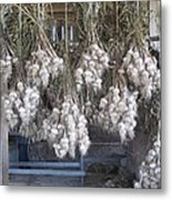 The Garlic Harvest Metal Print