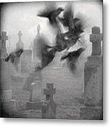 The Ghost Birds Metal Print