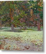 The Glade Covered With A Moss Metal Print by Victoria Kharchenko