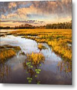 The Glades At Sunset Metal Print