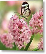 The Glasswing Metal Print