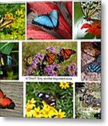 The Glory Of Butterflies 3 Metal Print