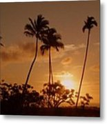 The Glow Of Sunset Metal Print