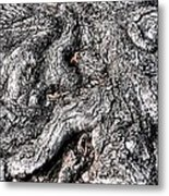 The Gnarled Old Tree Metal Print