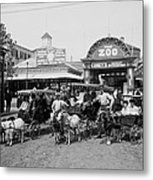 The Goat Carriages Coney Island 1900 Metal Print