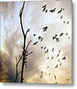 The Gods Laugh When The Winter Crows Fly Metal Print by Bob Orsillo