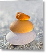 The Golden Egg Metal Print by Barbara McMahon