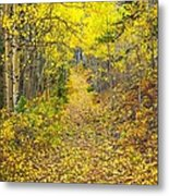 The Golden Path Metal Print