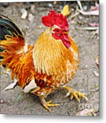 The Golden Rooster Metal Print