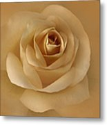 The Golden Rose Flower Metal Print