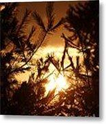 The Golden Sunset Metal Print