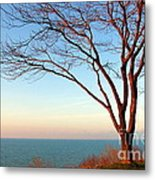 The Golden Sunset. Metal Print by Dipali S