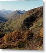 The Golden Valley Metal Print by Frederic Vigne