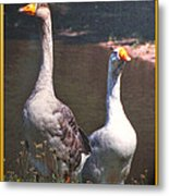 The Goose And The Gander Metal Print