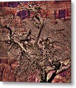 The Grand Canyon Viii Metal Print