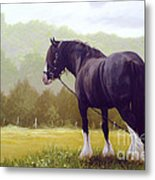 The Grass Is Greener  Metal Print by John Silver