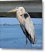 The Great Heron Metal Print