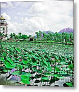 The Great Lotus Flower Pond Metal Print