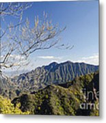 The Great Wall 834 Metal Print