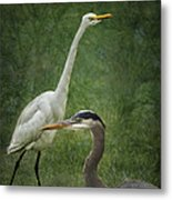 The Greats - Birds That Is... Metal Print