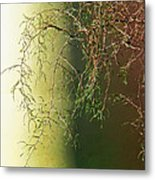 The Green End Of The Spectrum  Metal Print