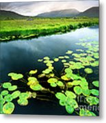 The Green Of Our Land Metal Print