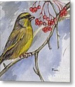 The Greenfinch Metal Print