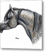 The Grey Arabian Horse 11 Metal Print
