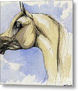 The Grey Arabian Horse 12 Metal Print