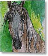 The Grey Arabian Horse 17 Metal Print