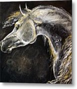 The Grey Arabian Horse 9 Metal Print