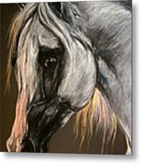 The Grey Arabian Horse Metal Print