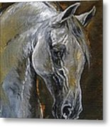 The Grey Arabian Horse Oil Painting Metal Print