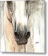 The Grey Horse Portrait 2014 02 10 Metal Print