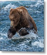 The Grizzly Plunge Metal Print