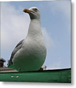 The Gull On The Roof Metal Print