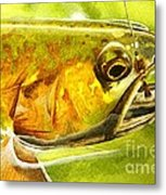 The Hare And The Trout Metal Print