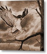 The Hawk Is Landing Metal Print
