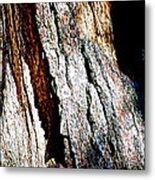 The Heart Of Barkness In Mariposa Grove In Yosemite National Park-california  Metal Print