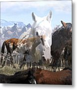 The Herd 2 Metal Print