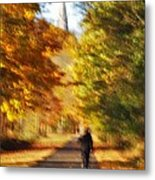 The Heritage Trail Metal Print